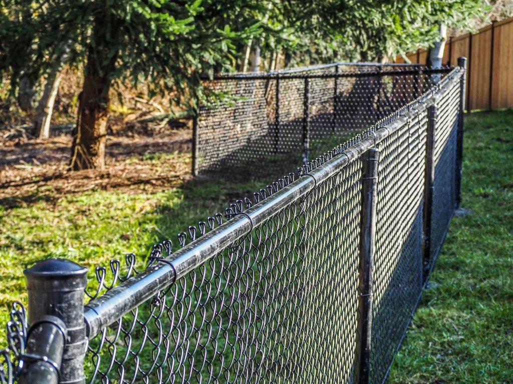 Jackson fencing
